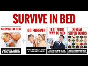 Survive in Bed Download